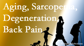 Johnson Chiropractic lessens a lot of back pain and sees a lot of related sarcopenia and back muscle degeneration.