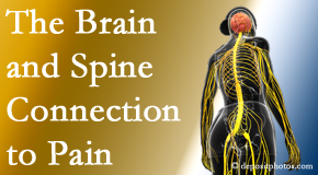Johnson Chiropractic looks at the connection between the brain and spine in back pain patients to better help them find pain relief.