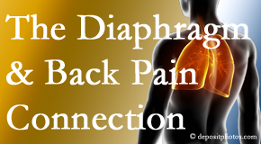 Johnson Chiropractic recognizes the relationship of the diaphragm to the body and spine and back pain.