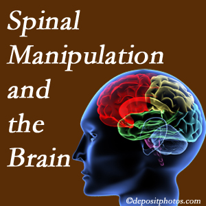 Johnson Chiropractic [presents research on the benefits of spinal manipulation for brain function.